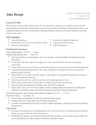 Visual Merchandiser Resume Sales Merchandiser Resume Resume For Study 83