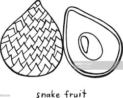 Snake Fruit Kleurplaat Zwartwit Grafische Vector Kunst Voor Boeken