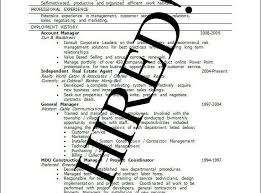 Good Resume Examples Gorgeous Good Examples Of Resumes Lovely Good Resume Example Examples Really
