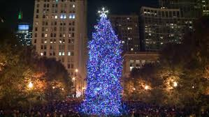 Daley Center Tree Lighting Everything You Need To Know About Tonights Chicago