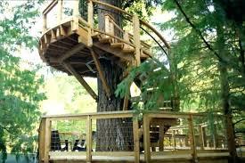 treehouse furniture ideas. Tick Treehouse Furniture Ideas N