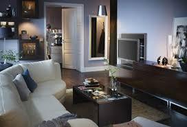 Ikea Living Room Cabinets Ikea Living Room Ideas White Wall Mount Cabinet Hang Crystal