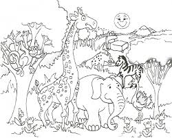 zoo coloring pages zoo animal coloring pages female lion and her free printable coloring pages zoo coloring pages zoo animal coloring pages female lion and her on zoo coloring sheets