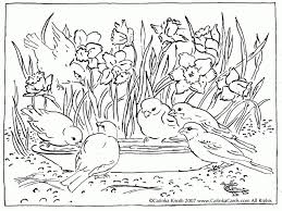 Spring Coloring Pages Difficult New Spring Birds Coloring Pages
