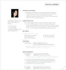 Ideal Resume Format Cool Ideal Resume Format Mkma
