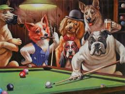 the most smart dogs playing pool picture