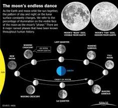 Lunar Phase Chart Earths Moon Phases Monthly Lunar Cycles Infographic Space
