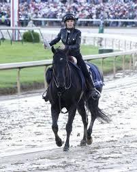 Donna Barton Brothers: Broadcaster on horseback | Sports |  register-herald.com