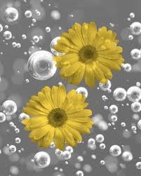 yellow gray bathroom wall art daisy flowers bubbles home decor picture