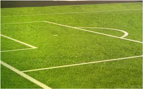 soccer field turf green grass66 green