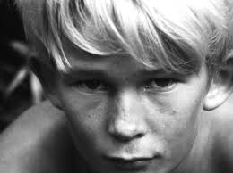 ralph lord of the flies entj lord the fly and mbti 33493371f82d512e7660e47492787452 jpg