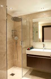 Small Picture Small Ensuite Bathroom Renovation Ideas Nucleus Home Apinfectologia