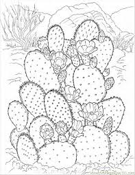 Small Picture Best 25 Flower coloring pages ideas on Pinterest Mandala