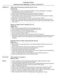 resume 360 - leisure travel resume samples velvet jobs .