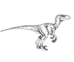 Small Picture Jurassic park coloring pages velociraptor ColoringStar