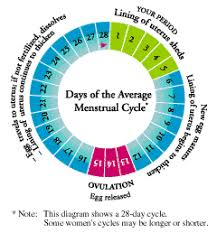 Period Cycle Pregnancy Chart Scientific Pregnancy Possibility Chart 2019