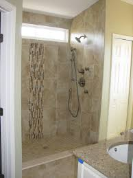 Bathroom  Small Bathroom Ideas With Shower Only Blue Bathroom - Bathroom shower renovation