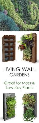 Best 25+ Wall gardens ideas on Pinterest | Vertical gardens, Succulent wall  gardens and Succulent wall diy