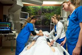 state registered nurse aide college of nursing immunization and tb screening all immunization and tb screening requirements must be met before the first day of class students who do not have these