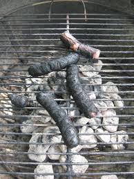 Guest Post: Top Ten Reasons You Had a Cook Out Fail | Big Wayner's BBQ Blog