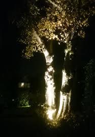Meer Sfeer Met De Juiste Tuinverlichting Sgdeco