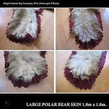 antique taxidermy polar bear skin rug
