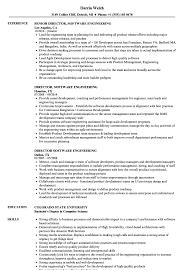 Director Of Engineering Resume Director Software Engineering Resume Samples Velvet Jobs 2