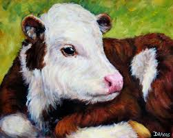 Image result for cow baby