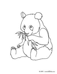 Small Picture Giant panda coloring pages Hellokidscom