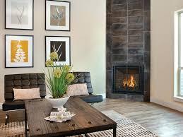 Kozy Heat Kozy Heat Fireplace Reviews