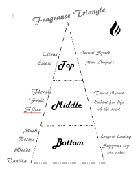 Understanding Fragrance Notes Perth Candle Supplies