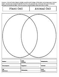 Comparing Plant And Animal Cells Venn Diagram Answers Compare And Contrast Plant And Animal Cells Sort Plant
