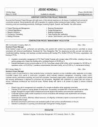 Construction Projectator Resume Digital Account Manager Sample New