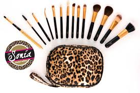 limited edition charm travel pro sonia sgd 125 charm travel pro sonia makeup brush set