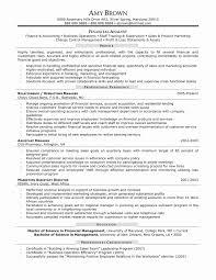 Real Estate Resume Sample Lovely Real Estate Investment Resume