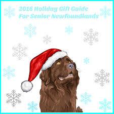 2016 holiday gift guide for senior newfoundlands
