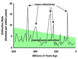 Image result for mass extinctions