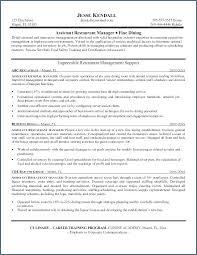 Fine Arts Teacher Cv Resume Curriculum Vitae Example A Application