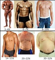 Brads Practical Guide To Body Fat Percentages Brad Newton