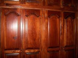 one of the trendy building materials used in closets these days is cedar cedar is lauded as a wood species that deters bugs and provides a plethora of
