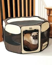 luxury dog crates furniture. Luxury Dog Beds Pet Furniture At Teacups Puppies Boutique Crates Gates Uk