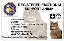 Cat Id Support Esa Registered Card Animal Emotional
