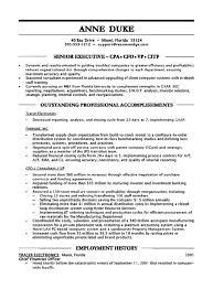 CFO Resume Stunning Cfo Resume