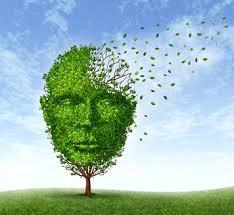 「精神分裂病と慢性期」の画像検索結果