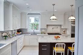 Oak Park Kitchen & Powder Room traditional-kitchen
