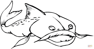 Small Picture Catfish 17 coloring page Free Printable Coloring Pages