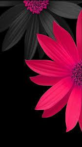 Pink Black Flower Wallpaper Background Templates Pinterest