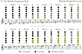 Pin On Penny Whistle Music Resources
