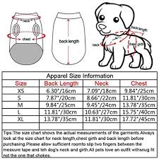 Animal Iq Chart Amazon Com Yotato Bubble Skirt Stripe Lace Dress Dog Dress
