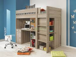 Loft Beds For Teenage Girls With Desk